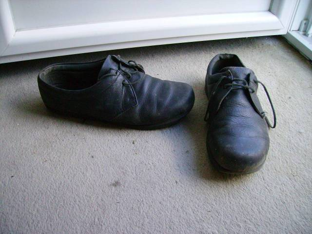 Leather Shoes Squeak Tongue